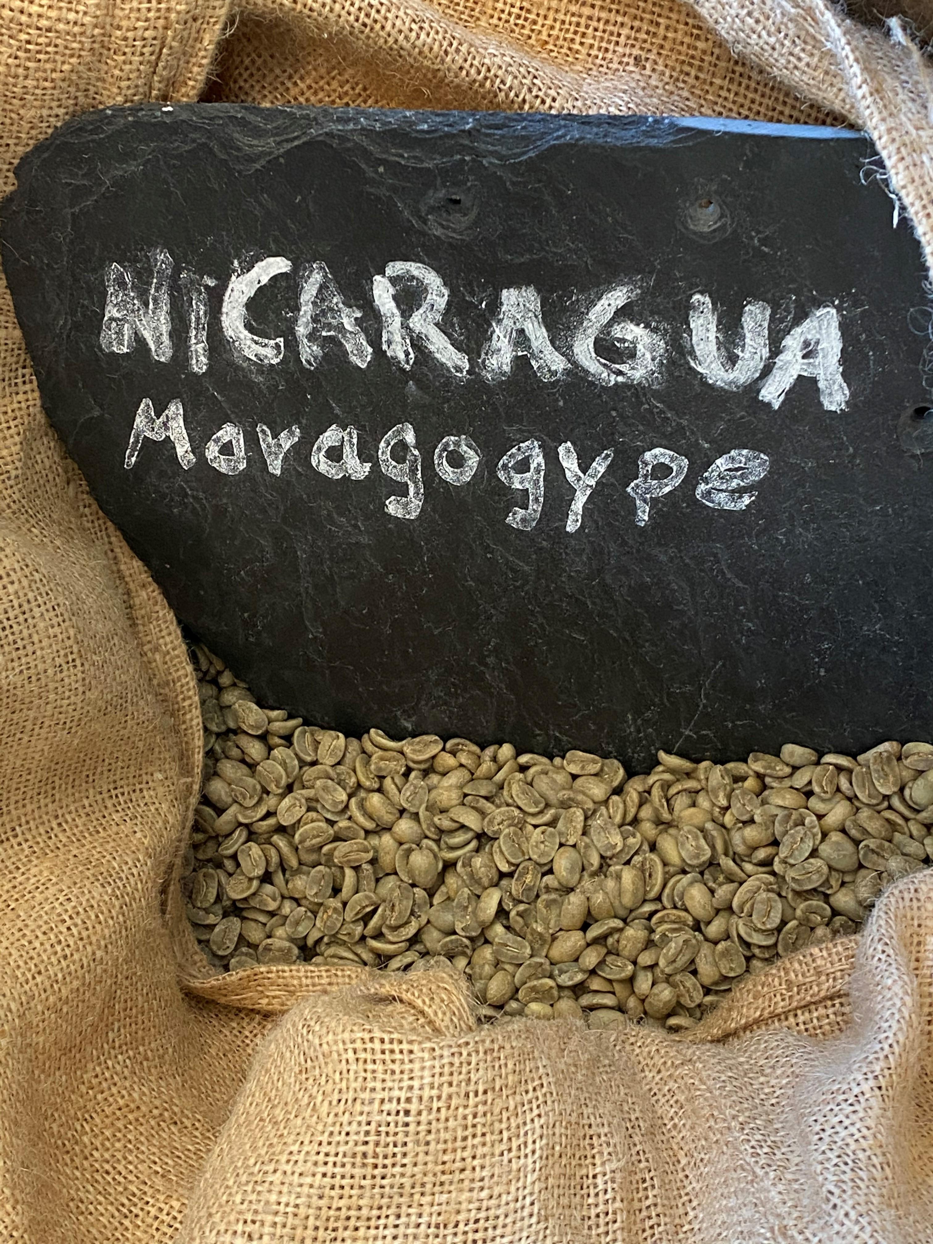 Nicaragua SHG Maragogype